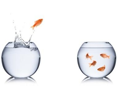 Il cambiamento in azienda: change management nelle risorse umane