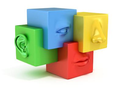 La memoria sensoriale: la vista e l'udito