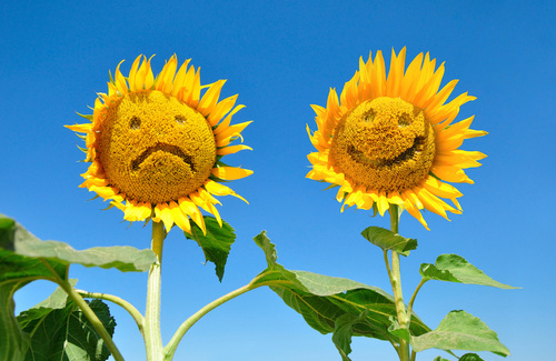 Disturbi dell'umore e stagioni: che ruolo ha il cervello?