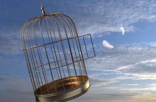 Felicità e libero arbitrio: quale relazione?