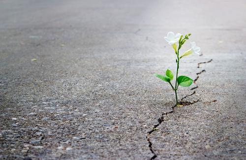 Perché smettiamo di avere speranza?