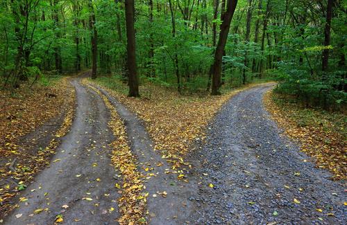 Come prendere una decisione: dalla razionalità perfetta a quella limitata