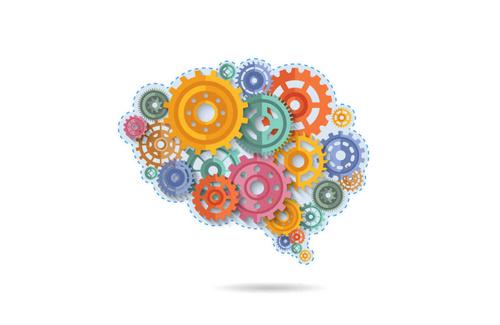 Funzioni esecutive: cosa sono e perché sono importanti