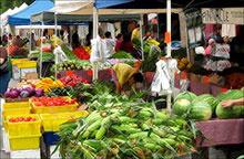 Gli sprechi alimentari e i paradossi dell'economia capitalista